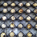 Hatching quail and broiler eggs using Petersime's single-stage incubators