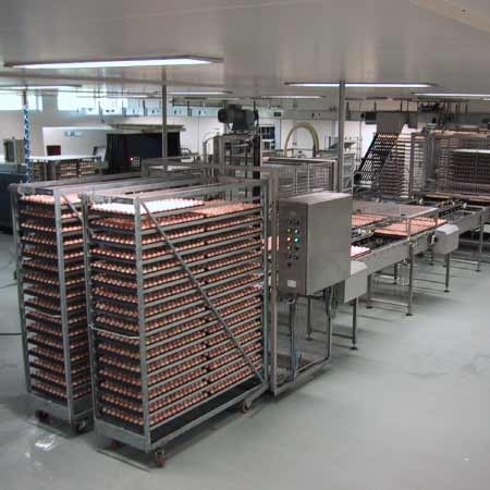 Automation   Hatchery equipment   Products   Petersime ...