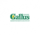 Logo of Gallus Kft