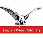 Logo of Eagle's Pride Hatchery
